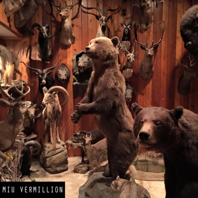 miu-vermillion_behind-the-scene_taxidermy_001